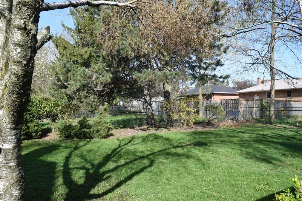 104 Maxome Ave - Backyard