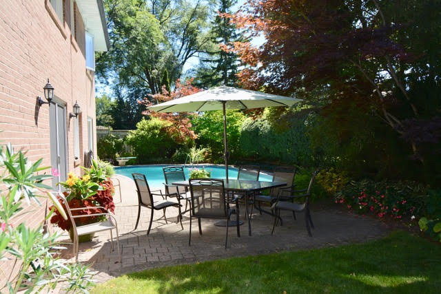 8 Boldmere Cres - Backyard