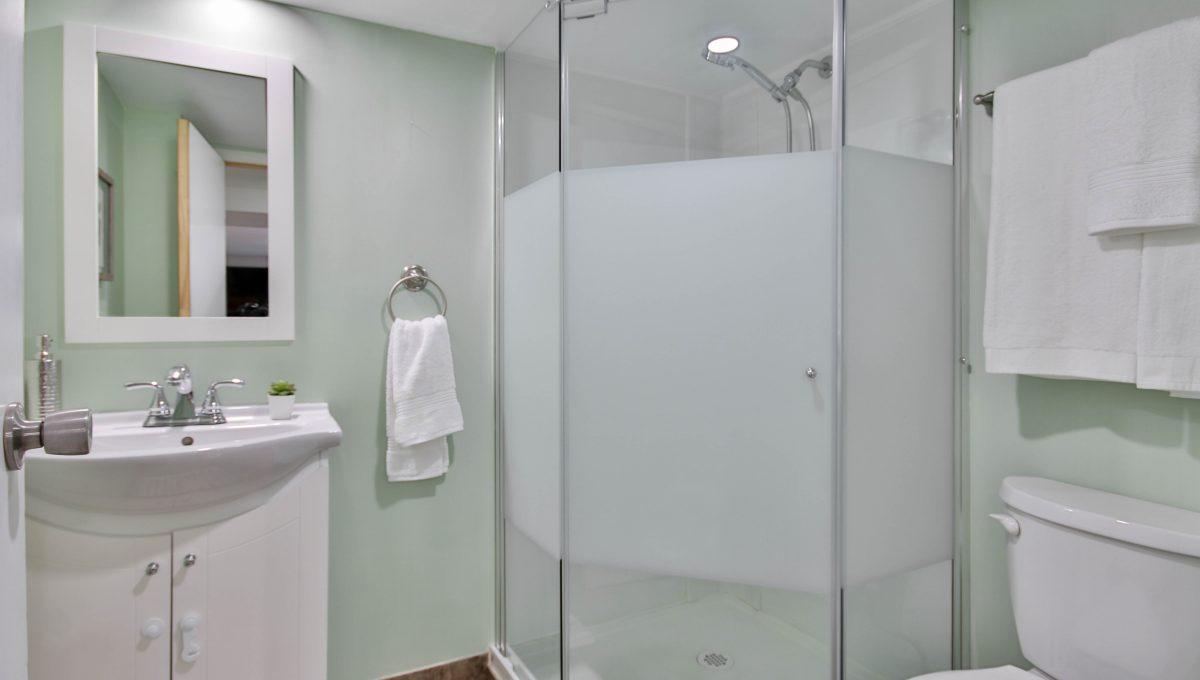 52_Basement_Bathroom