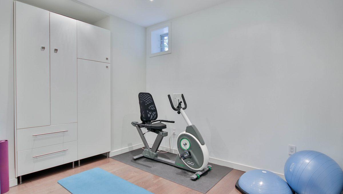 66_Basement_Gym